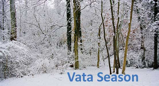 What is Vata Season?